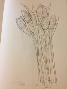 Tulips Sketch by Alex Landers at OuttaThePlayhouse.com